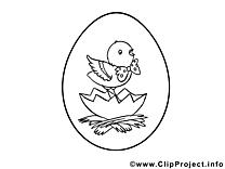 Dessin poussin – Pâques gratuits à imprimer