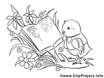 Livre oiseau image – Coloriage pâques illustration