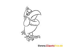 Perroquet image – Cartoons images à colorier