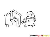 Poule cliparts gratuis – Cartoons à imprimer