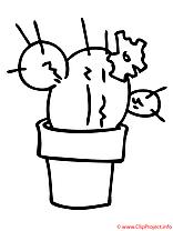 Cactus coloriage
