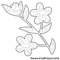 Image fleur – Coloriage printemps illustration