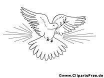 Pentec te coloriages clipart images t l charger gratuit - Colombe coloriage ...