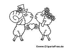 Moutons image – Coloriage saint-valentin illustration