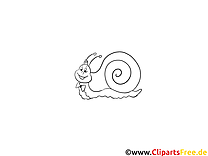 Escargot images gratuites – Animal à colorier