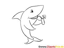 Requin clipart – Zoo dessins à colorier