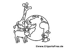 Terre animaux image – Zoo images à colorier