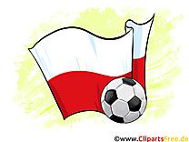 Pologne Drapeau Illustrations Football Joueurs télécharger
