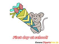 Koala illustration – Début école images
