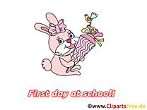 Lapin image à télécharger – Début école clipart