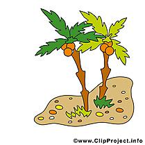 Île illustration - Palmes images gratuites