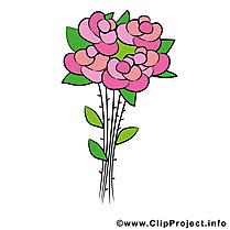 Roses dessin - Fleurs cliparts à télécharger