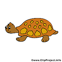 Tortue cliparts gratuis - Animal images gratuites