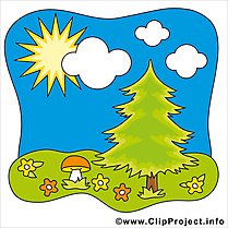 Ciel arbre image gratuite – Été illustration