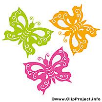 Image gratuite papillons – Été illustration