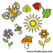 Image papillons – Été images cliparts