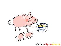 Clip art cochons – Ferme gratuite