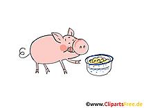 Clip art gratuit cochon – Ferme dessin