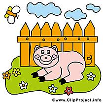 Cochon dessins gratuits – Ferme clipart