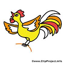 Coq dessins gratuits – Ferme clipart