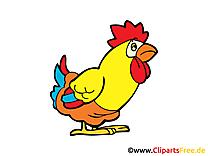Coq ferme image à télécharger gratuite