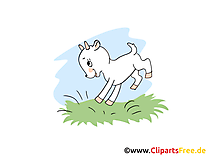 Ferme image gratuite – Chevreau cliparts