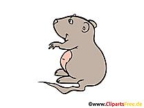 Hamster clipart gratuit – Ferme images