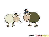 Moutons ferme illustration à télécharger gratuite