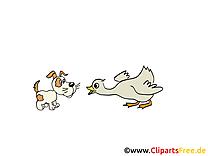 Oie chien clip art gratuit – Ferme images