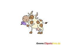 Vache dessins gratuits – Ferme clipart