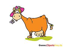 Vache image – Ferme images cliparts