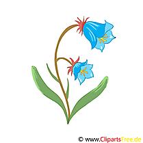 Dessin fleurs à télécharger gratuit