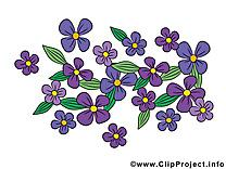 Fleurs illustration à télécharger gratuite