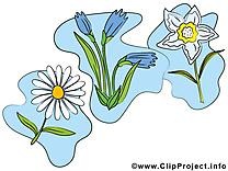 Fleurs images clip art gratuit à télécharger