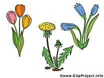Floraison dessin – Fleurs à télécharger
