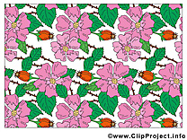 Fonds d'écran image – Fleurs images cliparts