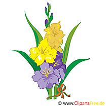 Hibiscus dessin à télécharger – Fleurs images