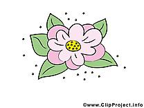 Lys image gratuite – Fleurs cliparts
