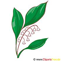 Muguet illustration gratuite – Fleurs clipart