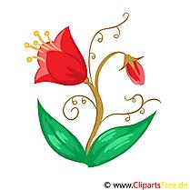 Tulipe clip art gratuit – Fleurs images