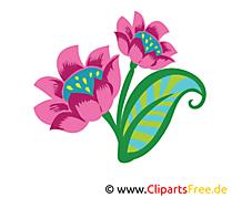 Violette dessins gratuits – Fleurs clipart
