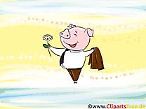 Cochon images gratuites – Fonds d'écran gratuit
