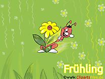 Fourmi dessin - Fonds d'écran images