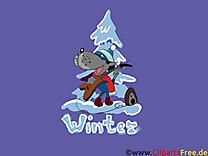 Loup hiver fonds d'écran image à télécharger
