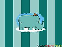 Rhinocéros fonds d'écran dessin gratuit