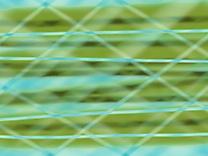 Image gratuite fonds d'écran illustration
