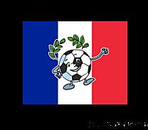 Ballon de football drapeau France