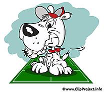 Chien dessins gratuits - Football clipart