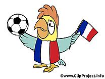 Football championnat France clipart image
