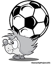 Hérisson image à télécharger - Football clipart